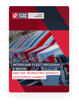 Stiahnuť Inter Cars Fleet Program ebook