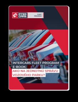 Stiahnuť Inter Cars Fleet Program ebook